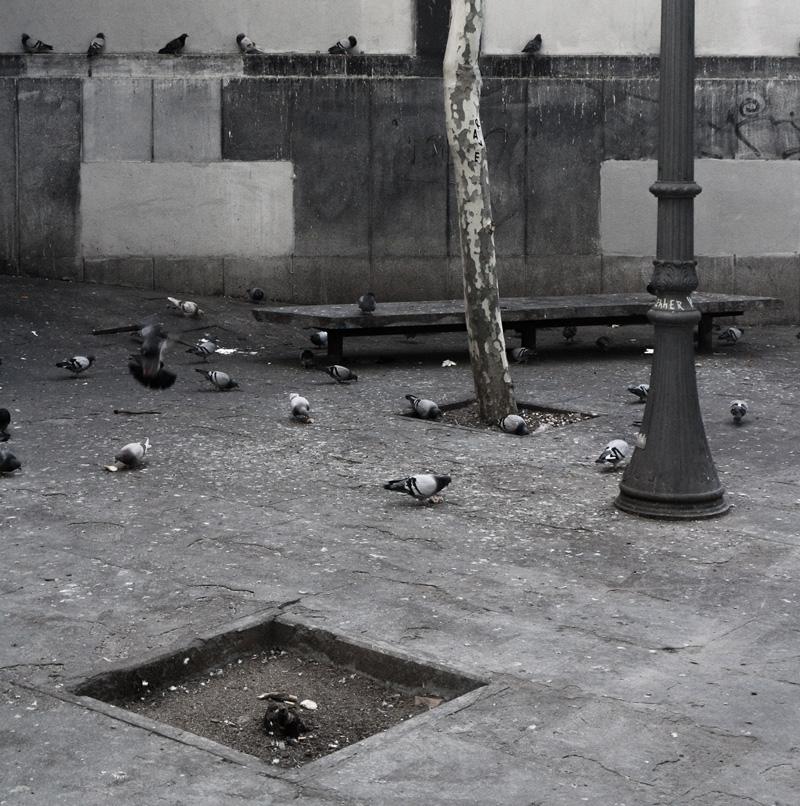 Spotkanie poplenerze fotograficznym wBarcelonie | warsztaty-fotograficzne.org | fot.Artur Rychlicki